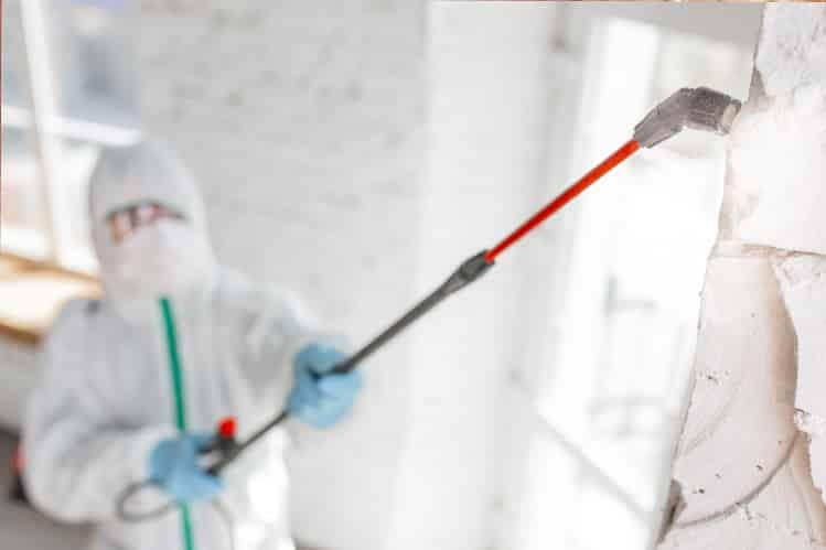 traitement humidité et remontée capillaires